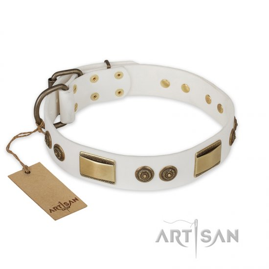 'Golden Avalanche' FDT Artisan White Leather Mastiff Collar with Old Bronze Look Plates and Circles - 1 1/2 inch (40 mm) wide