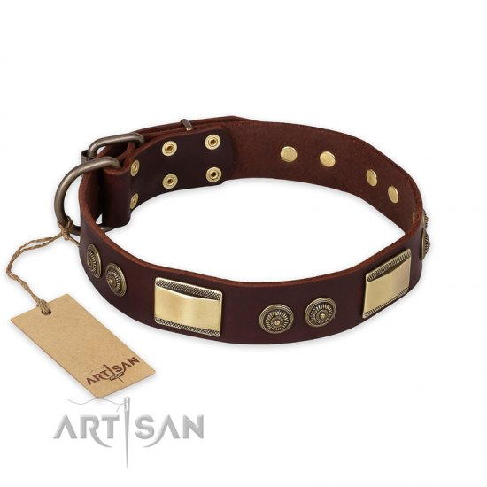 """Golden Stones"" FDT Artisan Brown Leather Mastiff Collar with Old Bronze Look Plates and Circles - 1 1/2 inch (40 mm) wide"