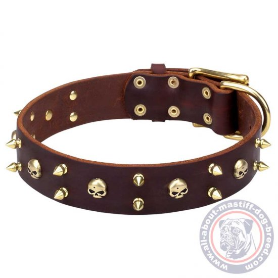 Mastiff Rock Style Brown Leather Dog Collar with Brass Spikes and Skulls - Click Image to Close