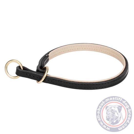 Mastiff Leather Choke Collar with Inside Support Material