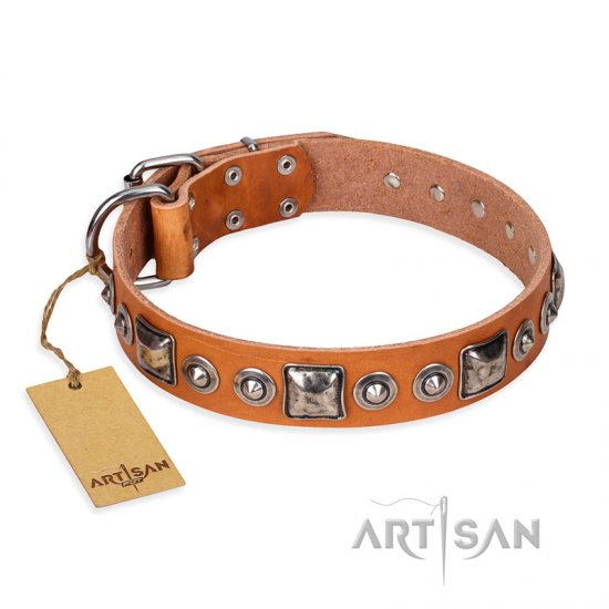 'Era of Future' FDT Artisan Handcrafted Tan Leather Mastiff Dog Collar with Decorations