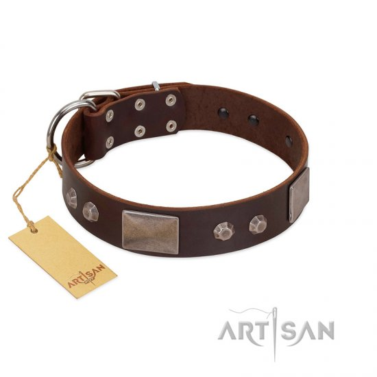 """Stone Stars"" Stylish Handmade FDT Artisan Brown Leather Mastiff Collar"