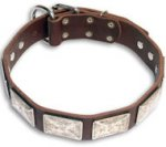 Leather Brown collar 25'' for Mastiff /25 inch dog collar - C83