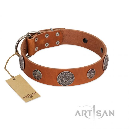 """Foxy Nature"" FDT Artisan Tan Leather Mastiff Collar with Chrome Plated Brooches"