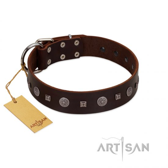 """Pure Sensation"" Exclusive FDT Artisan Brown Leather Mastiff Collar with Fancy Brooches and Studs"