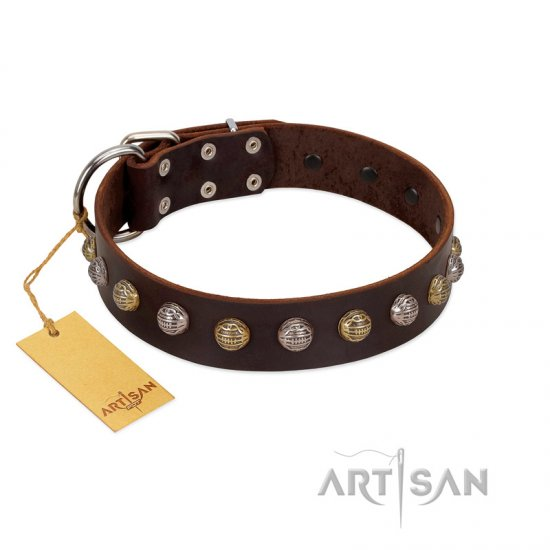 """Gape Buster"" FDT Artisan Brown Leather Mastiff Collar with One Row of Studs"