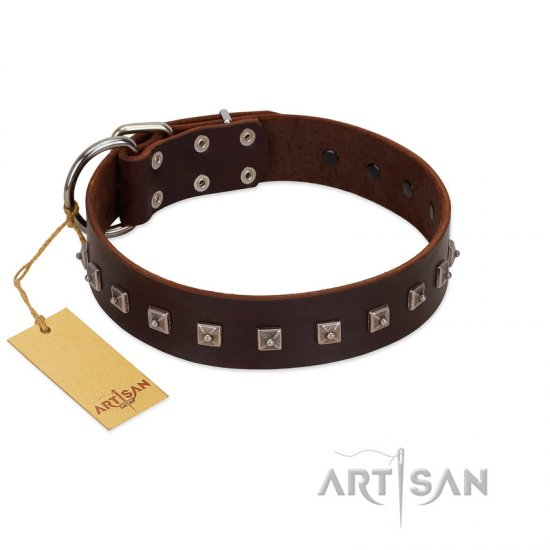 """Kingly Grace"" FDT Artisan Brown Leather Mastiff Collar with Silver-like Dotted Studs"