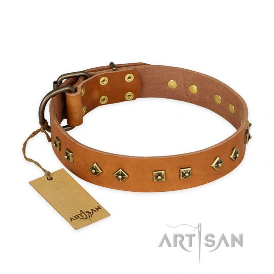 'Autumn Story' FDT Artisan Tan Leather Mastiff Collar with Old Bronze Look Studs - 1 1/2 inch (40 mm) wide