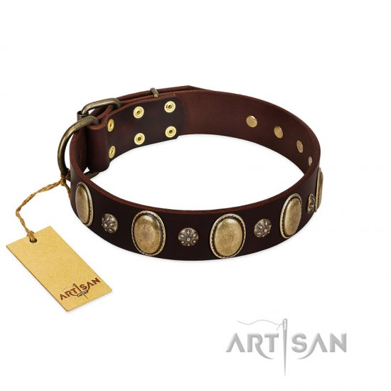 """Bronze Idol"" FDT Artisan Brown Leather Mastiff Collar with Eye-catching Ovals and Small Studs"