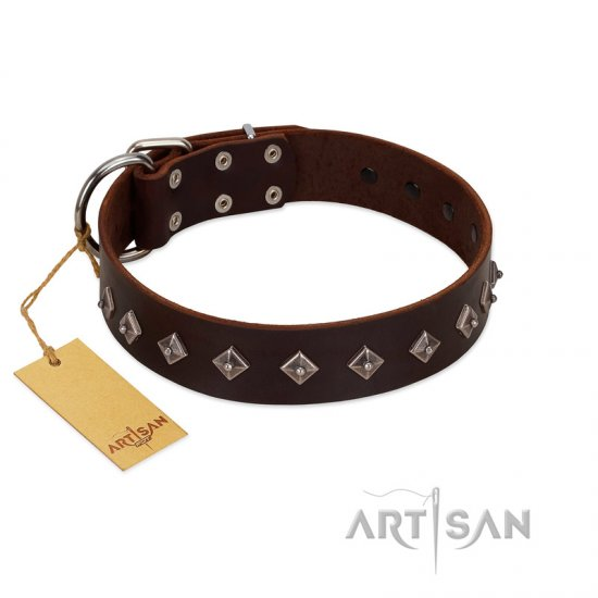 """Boundless Energy"" Premium Quality FDT Artisan Brown Designer Leather Mastiff Collar with Small Pyramids"