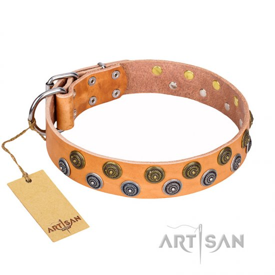 """Precious Sparkle"" FDT Artisan Handcrafted Tan Leather Collar for Mastiff"