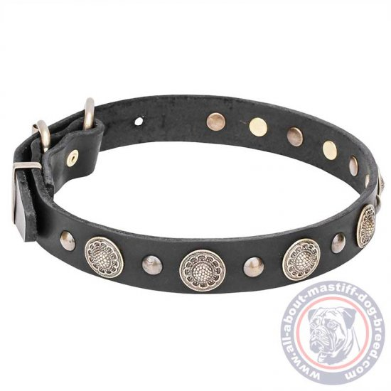 Mastiff Leather Dog Collar with Round Studs with Engravings