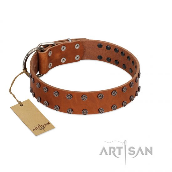 """Star Light"" Stylish FDT Artisan Tan Leather Mastiff Collar with Silver-Like Studs"