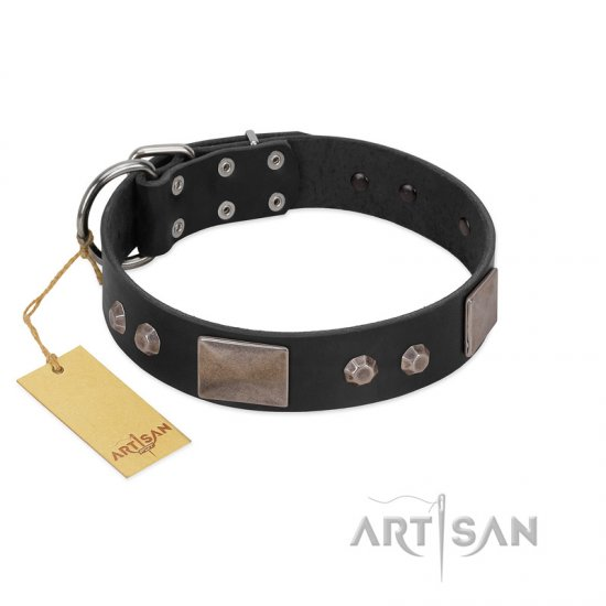 """Square Stars"" Modern FDT Artisan Black Leather Mastiff Collar with Square Plates and Studs"