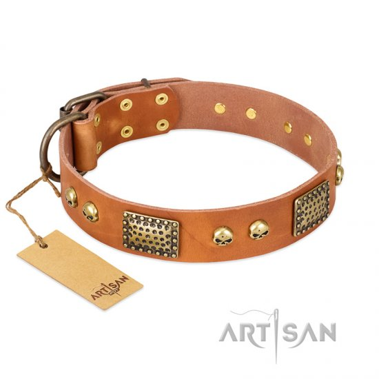 """Saucy Nature"" FDT Artisan Tan Leather Mastiff Collar with Old Bronze Look Plates and Skulls"