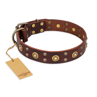 'Unfailing Charm' FDT Artisan Mastiff Studded Tan Leather Dog Collar
