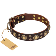 'Flower Melody' FDT Artisan Brown Leather Dog Collar with Mixed Studs for Mastiff Daily Walking