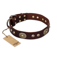 'Breath of Elegance' FDT Artisan Decorated with Plates Brown Leather Mastiff Collar