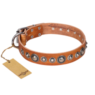 'Daily Chic' FDT Artisan Tan Leather Mastiff Collar with Decorations
