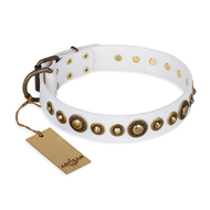 'Swirl of Fashion' FDT Artisan Delicate White Leather Mastiff Collar with Stunning Bronze-like Plated Round Studs