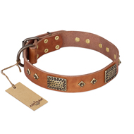 'Catchy Look' FDT Artisan Decorated Tan Leather Mastiff Collar
