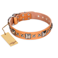 'Silver Chic' FDT Artisan Tan Leather Mastiff Collar with Silvery-plated Decorations