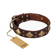 'Golden Square' FDT Artisan Brown Leather Mastiff Collar with Large Squares - 1 1/2 inch (40 mm) wide