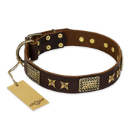 """Sparkling Bronze"" FDT Artisan Brown Leather Mastiff Collar with Stars and Plates - 1 1/2 inch (40 mm) wide"