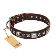 'Perfect Impression' FDT Artisan Brown Leather Mastiff Collar with Silvery Square Studs - 1 1/2 inch (40 mm) Wide
