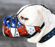 Handpainted & Adjustable Leather Muzzle for Argentinian Mastiff