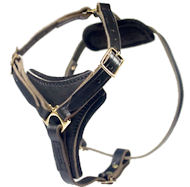 Latigo Adjustable Harness-Mastiff Leather Harness