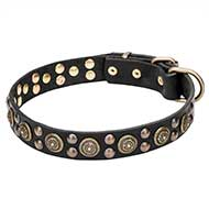 Mastiff Wide Leather Dog Collar with Massive Brass Decorations