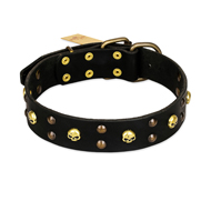 FDT Artisan 'Heavy Metal' Leather Mastiff Collar with Skulls and Studs 1 1/2 inch (40 mm)