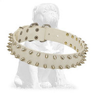 Mastiff Fashion White Leather Dog Collar with Spikes