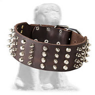 2 inch Leather Dog Collar with Studs and Spikes for Mastiff