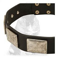 Handcrafted Leather Dog Collar With Vintage Massive Plates