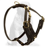 Everyday Leather Dog Harness for Mastiff
