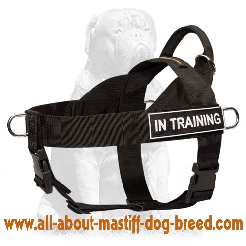 Mastiff Nylon Dog Harness Multi-Tasking with Pattches