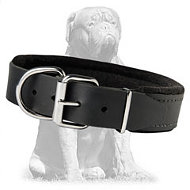 Premium quality padded leather collar
