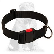 Everyday walking nylon Mastiff collar