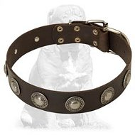 Posh handcrafted Mastiff collar