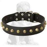 Gorgeous Wide Leather Dog Collar - Mastiff Leather Collar