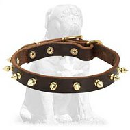 Multipurpose Spiked leather collar