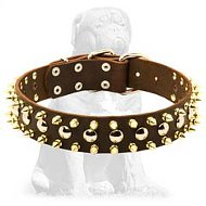 Three Rows brass Leather Spiked and Studded Mastiff collar
