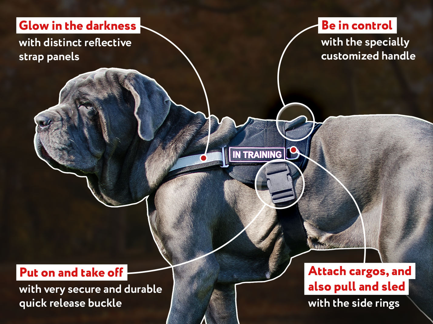 Reflective Lightweight Nylon Mastiff Dog Harness