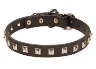 Rich Mastiff Leather Collar with Studs