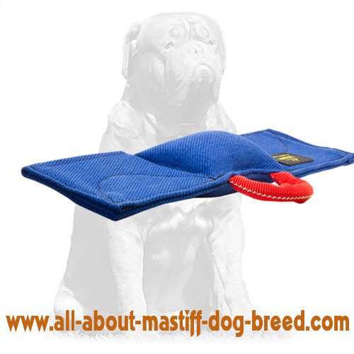 Strong biting pad for dog training