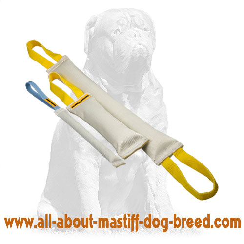 Reliable biting tugs for dog training with handles