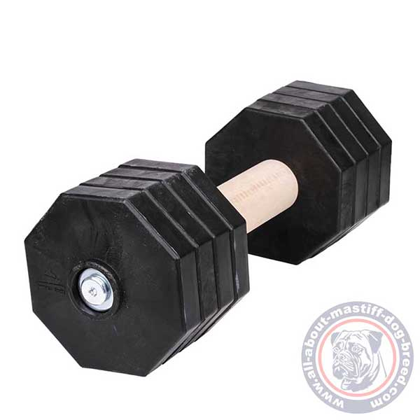 Safe for teeth dog dumbbell