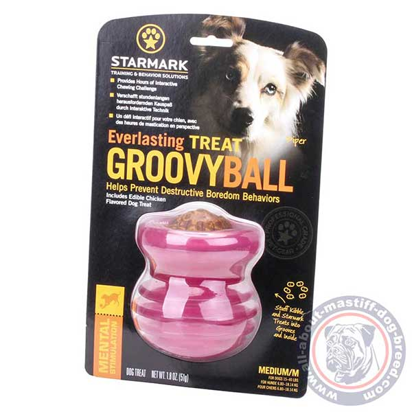 Durable dog food dispenser